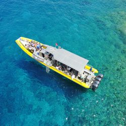 Maui Reef Adventures   Reef Explorer from Drone